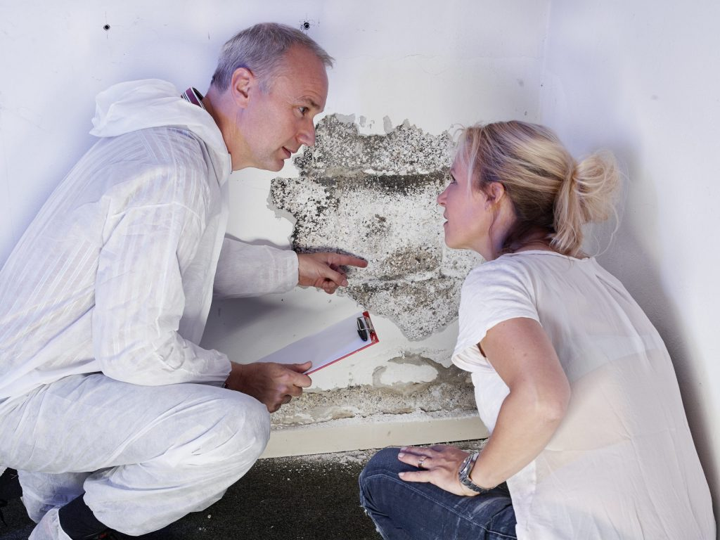 Mold Inspector explains something to a customer